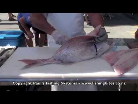 Cleaning Fish   Filleting, Skinning And Boning Large Snapper