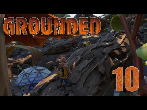 🐞Grounded #10 Angriff