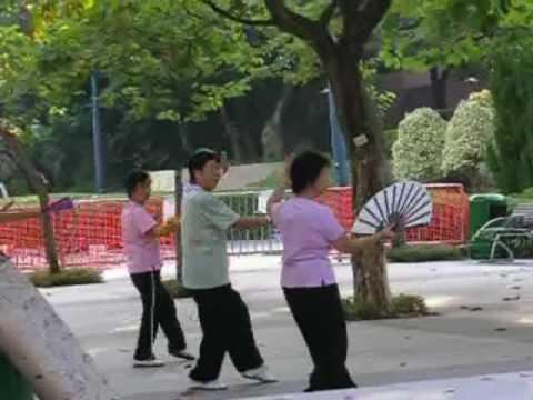 Kowloon Park - Tai Ji - Fan Form