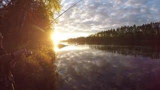 Рыбалка в Тайге. Поиск тайменя на реке ТЫНДА