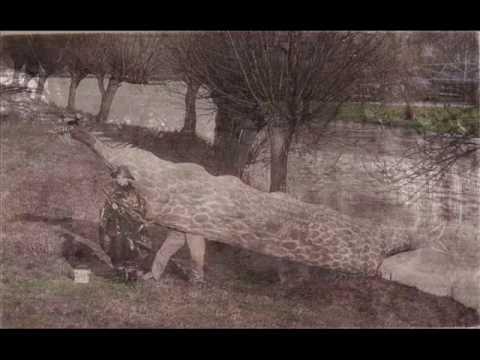 Eaton Socon - The Hillings - 1930