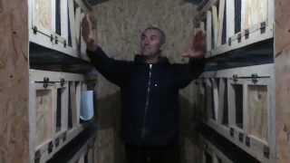 видео Сделать сарай для кроликов