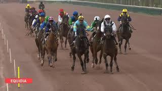 Vidéo de la course PMU PRIX DE CHAMPCEY
