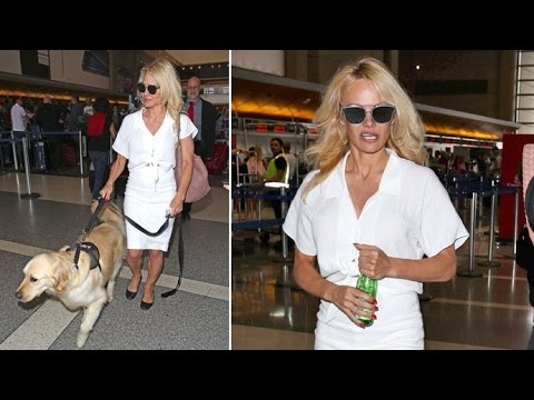 Pamela Anderson And Her Pooch Head To Support Boyfriend Julian Assange Amid US Indictment Threats thumbnail