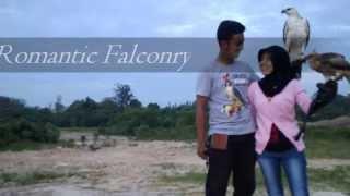 Romantic Falconry (Bontang Falconry)