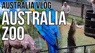 Getting to Know Australian Wildlife   A Day at Australia Zoo   Brisbane