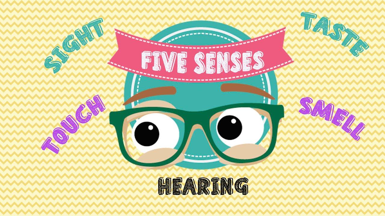 Aprende En Inglés Los 5 Sentidos