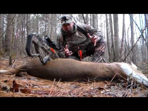 Crossbow Hunt Buck Down 2018 ( Viewer Discretion )