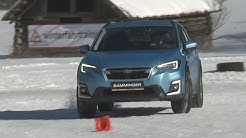 "Autohaus Bamminger ""Winter Driving Expirience 2020"""