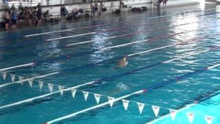 Video 200 estils club natació benicarló castelló 22.01.12 download MP3, 3GP, MP4, WEBM, AVI, FLV Februari 2018