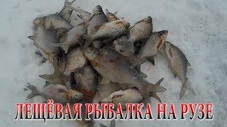 Рыбалка на Рузском водохранилище осенью, ловим леща на фидер и поплавочную удочку видео