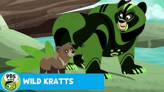 Wild Kratts: Fishing for Salmon thumbnail