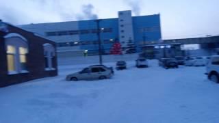 Живой снег