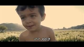 【洋画】 ビジター 【字幕】