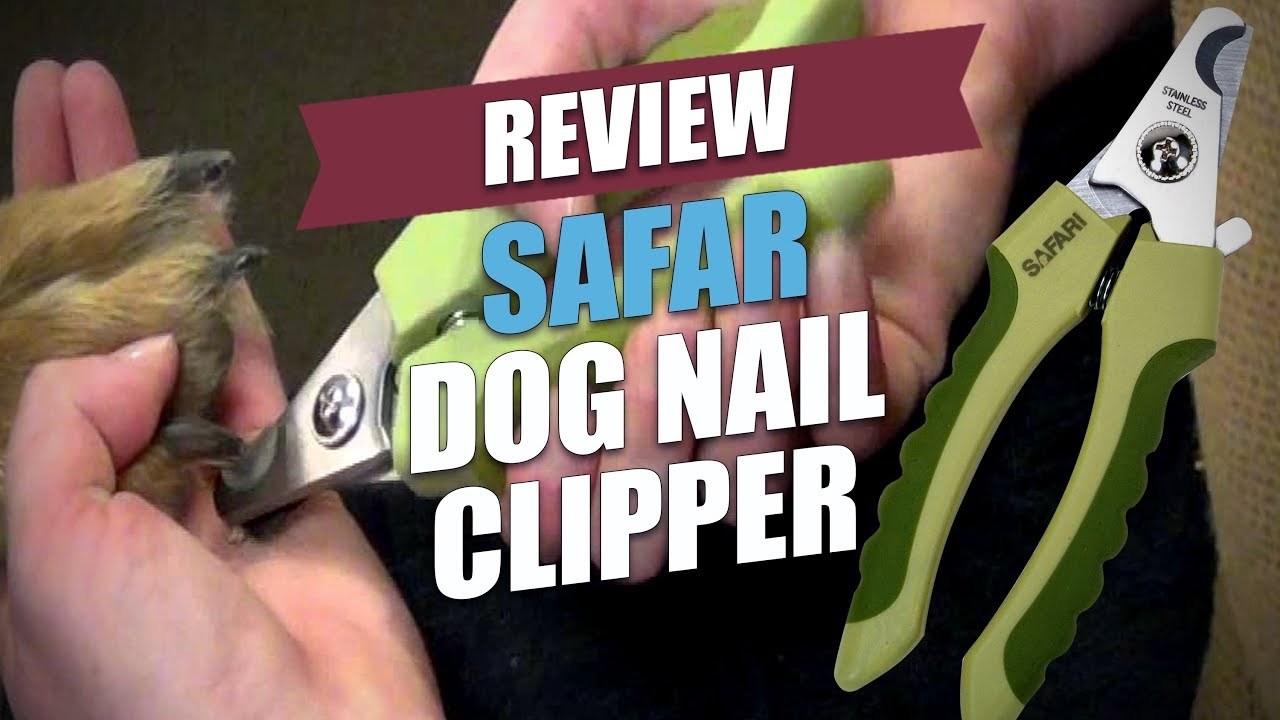 Safari Dog Nail Clipper Review 2018