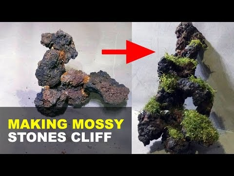 Making Stones Cliff Aquascape Decoration Using Lava Rock And Moss