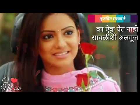 Tujvin sakhya re | Marathi serial title song | तुजविन सख्या रे |