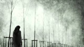 W.A.S.P - Heavens Hung In Black (Lyrics on screen)