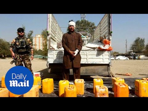 Afghan police seize Taliban truck with bomb headed for Kabul - Daily Mail