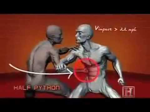 Learn how to fight in 5 minutes. The best techinques for SELF DEFENSE.