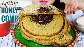 ASMR EXTREME RAW Honeycomb STICKY EATING SOUNDS PART 02 | LINH-ASMR
