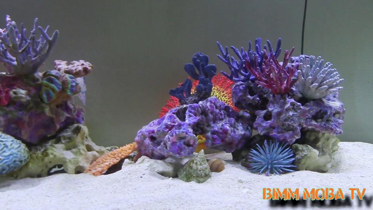3d druck meerwasser aquarium modellbau youtube. Black Bedroom Furniture Sets. Home Design Ideas