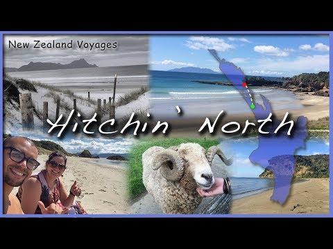 NZ05: Hitchin' North // A Voyage into Northland, NZ