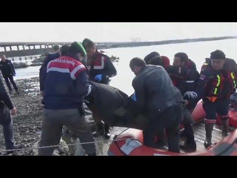 يورو نيوز:يورونيوز تنقل مأساة المعارض الشاب فتيح ياسر