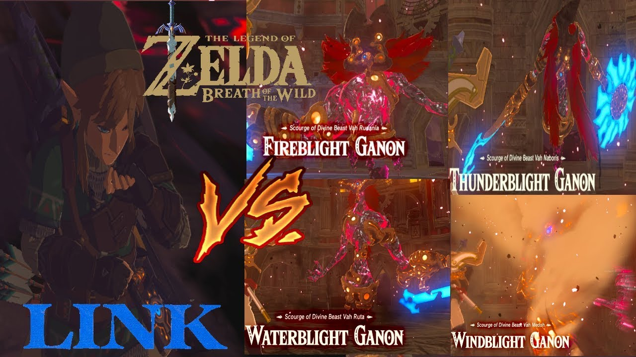 Link Vs All Ganon Blights And Calamity Hyrule Castle Raid Finale