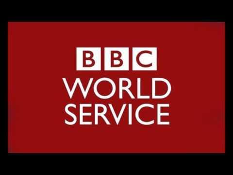 Patrick Basham BBC World Service