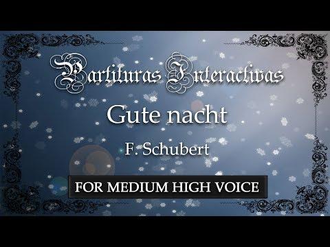 Gute Nacht - F. Schubert (Karaoke - Key: C minor) (Bonus track for medium voice)