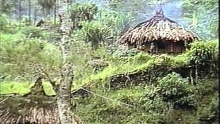 Chickenhawk (men who loves boys) 1994