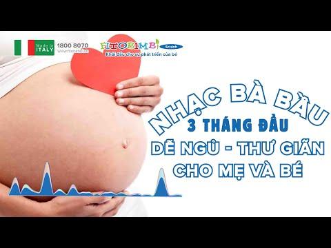 Nhạc Bà Bầu 3 Tháng Đầu Dễ Ngủ: Giúp Mẹ Bầu Và Bé Thư Giãn Khi Nghe Nhạc Thai Giáo 3 Tháng Đầu