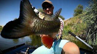 Самі уловисті коливні блешні. Best fishing spoons