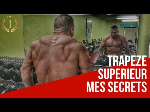 MUSCULATION  TRAPEZES HALTERES  POWER TRAINING