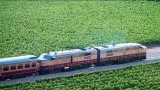 Napa Valley Wine Train! Organic Food & Wine!