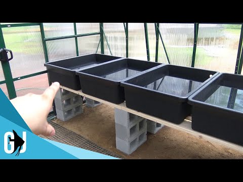 #546: TImelapse Simple Aquaponics Rack System in Greenhouse - DIY Wednesday