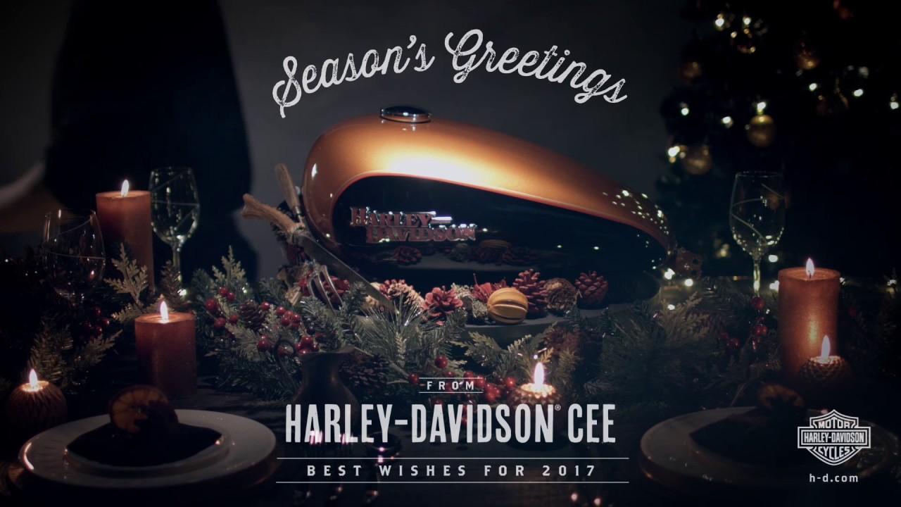 Ботинки Мужские Harley Davidson AARON brown - YouTube
