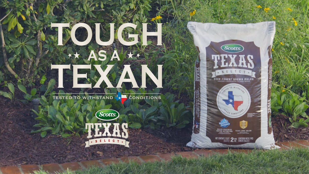 The Perfect Mulch To Withstand The Toughest Texas Summers Youtube