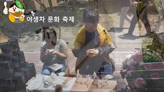 하동 오감길 - 야생차 문화 축제