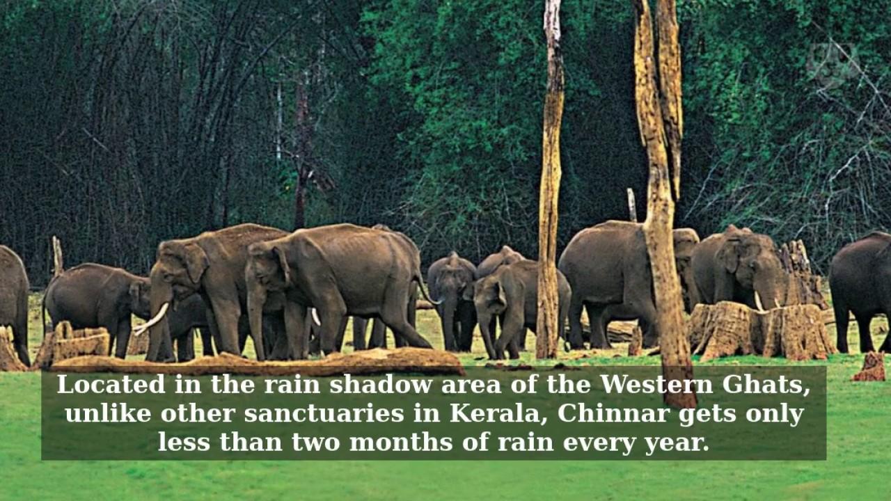 Chinnar Wildlife Sanctuary, Idukki