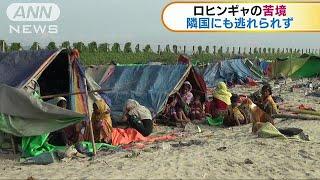 ロヒンギャの難民問題 隣国を目指すも厳しい生活(17/11/13) ロヒンギャ 検索動画 11