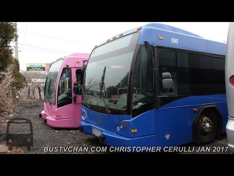 RETIRED LYNX BUSES 595 573 and 622 FROM ORLANDO FL IN NEW JERSEY NOW