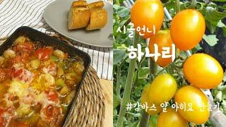 감바스 알 아히요 만들기 (feat. 새우, 마늘, 올…