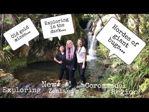 Hordes Of Bugs And Old Gold Mines In New Zealand's Coromandel! Episode 6 - A Journey In The Dark