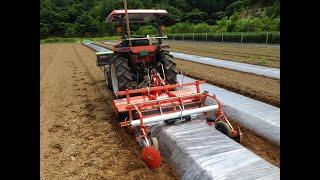 平高畝成形同時マルチ 太陽熱消毒 Soil solarization/Fertilizer application/Ridging/Bed tiller/Mulch laying