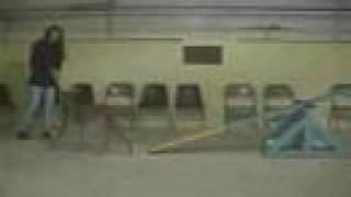 Dingo's Agility For Fun Class - February 2003