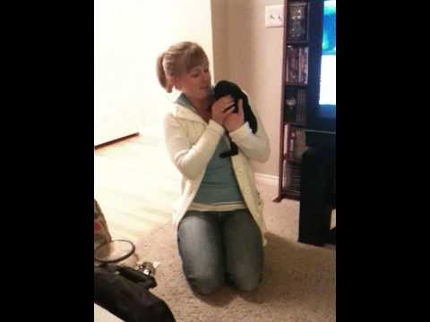 Sarah being surprised with Daphne (our new puppy pug)