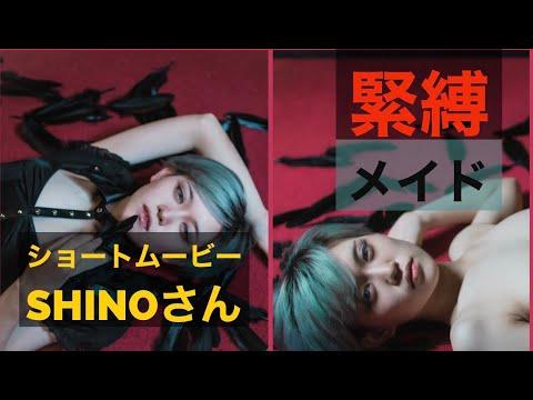 【緊縛】ショートムービー緊縛メイド拘束モデルShinoさん #緊縛 #メイド#拘束 #SM