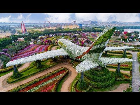 دبي ميراكل غاردن.. حديقة بـ150 مليون وردة وسط الصحراء  - 08:54-2018 / 12 / 11